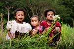 kids_harvest